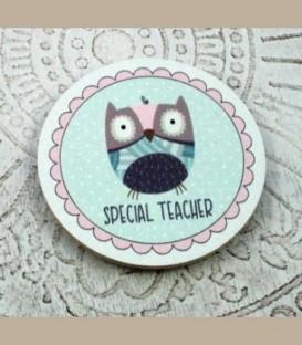 Μαγνητάκι κουκουβάγια Special Teacher A
