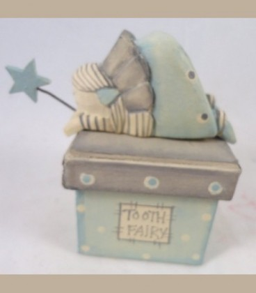 Tooth fairy Box Boy